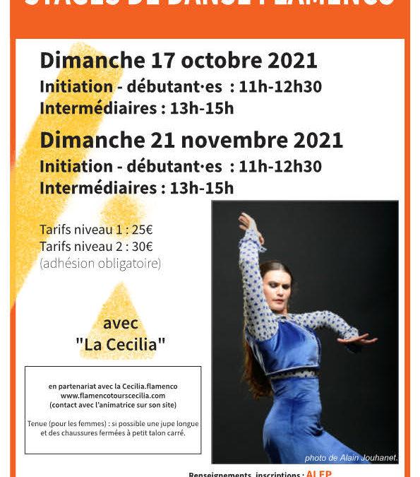 Stage de danse flamenco